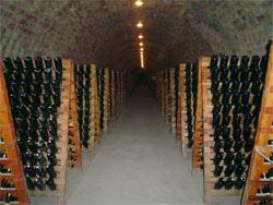 Champagne in productie kelder