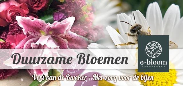 eBloom Duurzame Bloemen en Planten