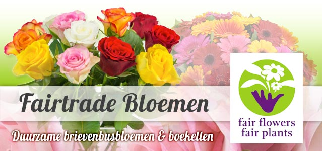 Fairtrade bloemen - Fair Flowers Fair Plants