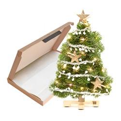Het leukste kerstcadeau door de brievenbus